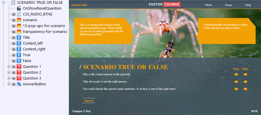 FasterCourse Countryside Template Scenario True/False page