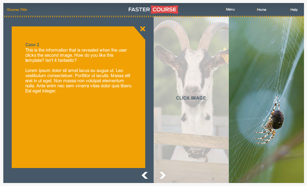Articulate Storyline Countryside Guide Case 2 Images Preview