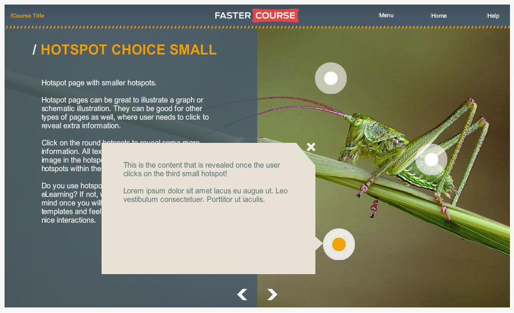 Articulate Storyline Countryside Guide Hotspot Choice Small Selected Preview