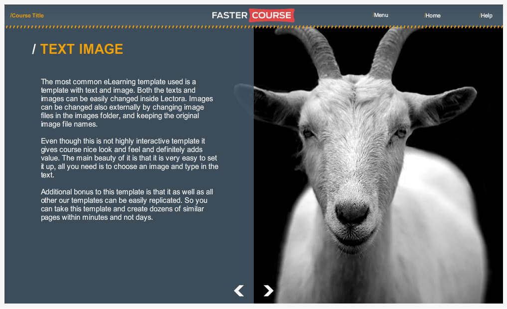 Articulate Storyline Countryside Guide Text Image Preview