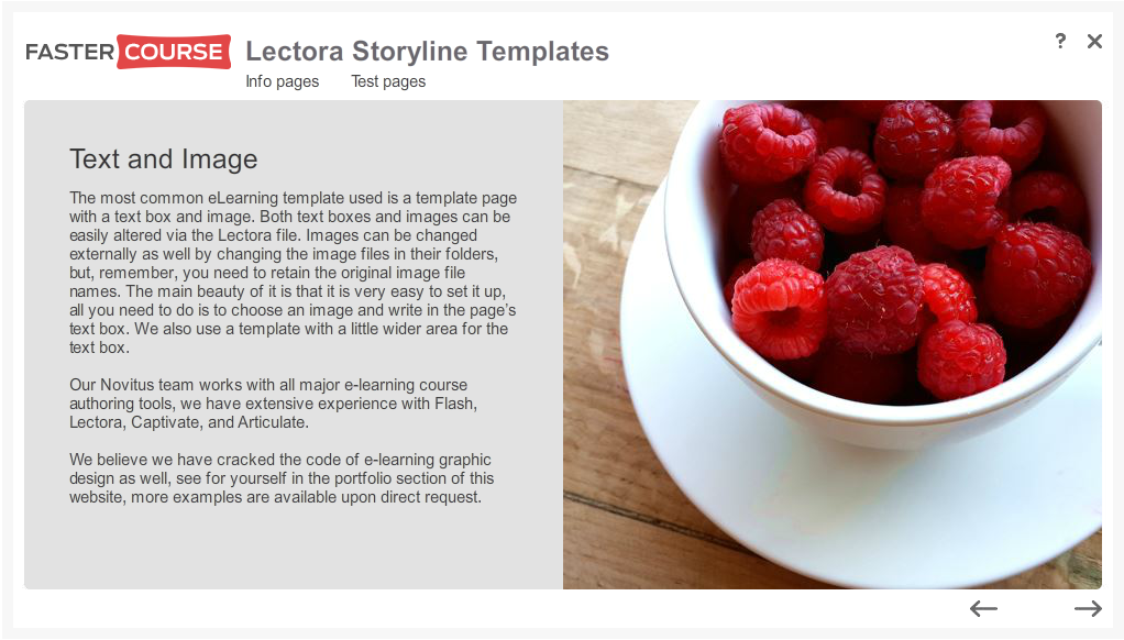 Articulate Storyline Free Guide Text and Image Preview