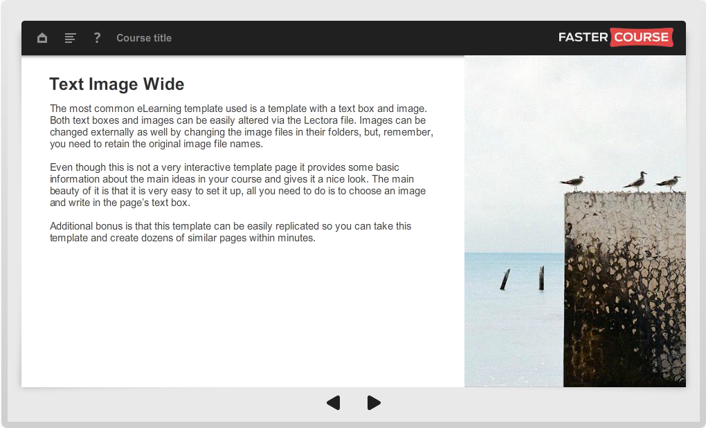 Articulate Storyline Guide Text Image Wide Preview