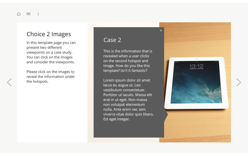 Articulate Storyline StartUp Guide Choice 2 Images Selected Preview