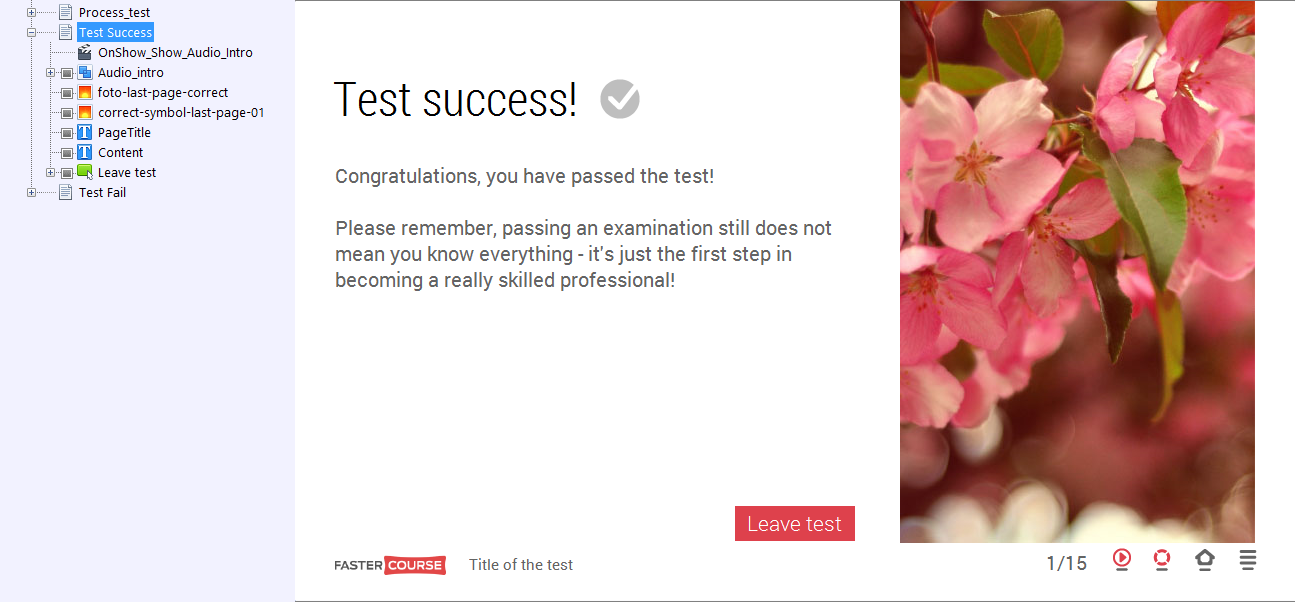 Test Success